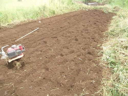 大根の植え付けの、お手伝い.._b0137932_2022749.jpg