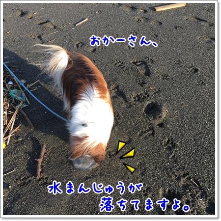 d0013149_00173864.jpg