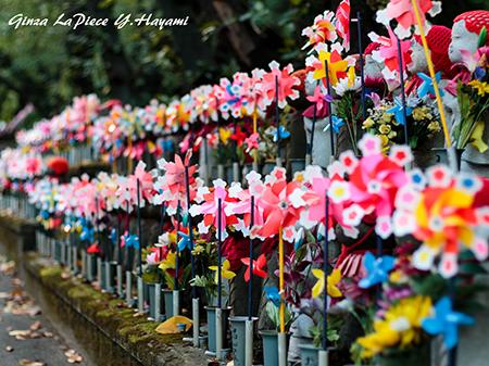 東京の風景 増上寺の風景_b0133053_23275886.jpg