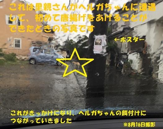 f0121712_16191625.jpg