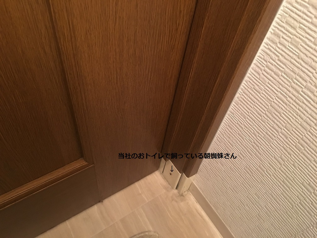 e0108337_09314326.jpg