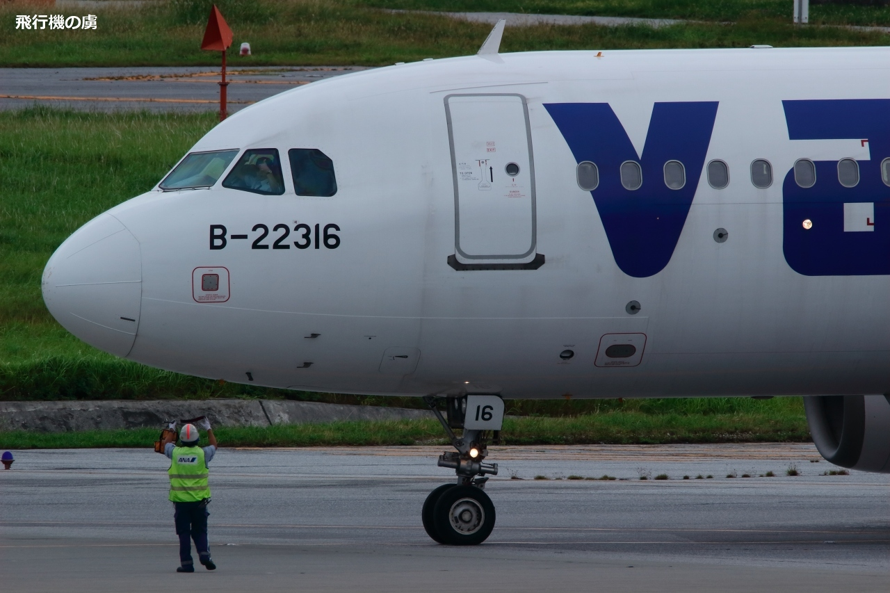タイワンツキノワグマを捕獲  1頭目  A320  V エア (ZV)_b0313338_22444767.jpg