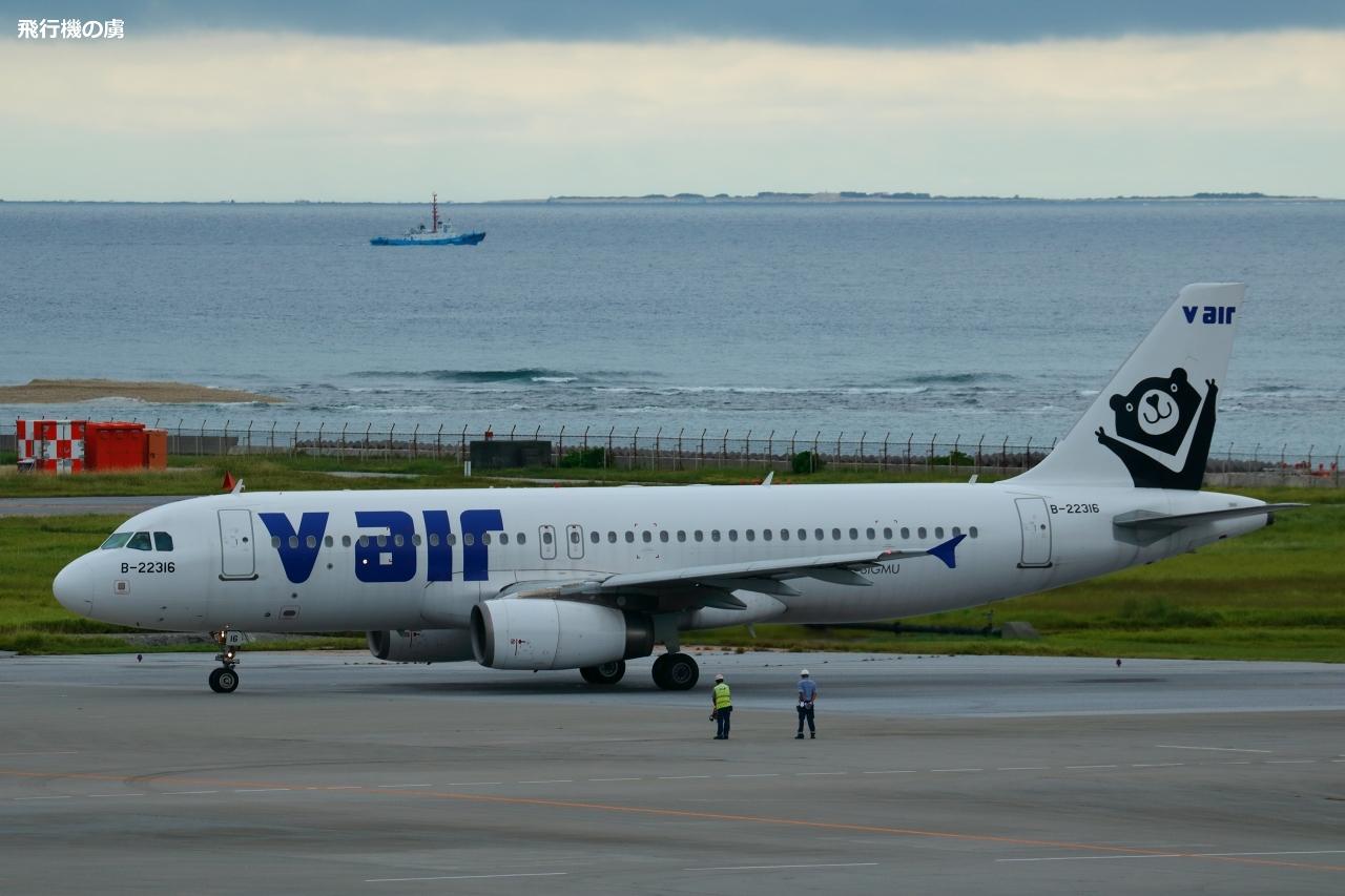 タイワンツキノワグマを捕獲  1頭目  A320  V エア (ZV)_b0313338_22445734.jpg