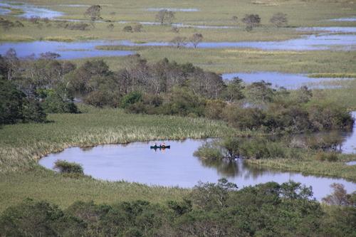 湿原は自然のダムだった 9月10日_f0113639_18184451.jpg