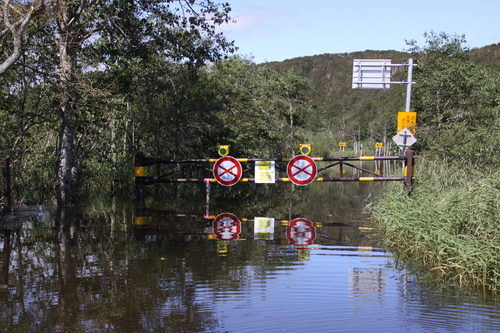 湿原は自然のダムだった 9月10日_f0113639_18225682.jpg