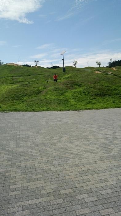 漢の滋賀守山によくある風景②_c0308247_13470811.jpg
