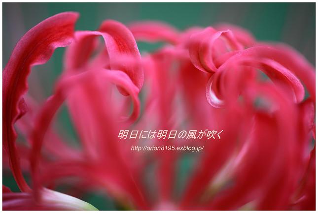f0361079_15441666.jpg