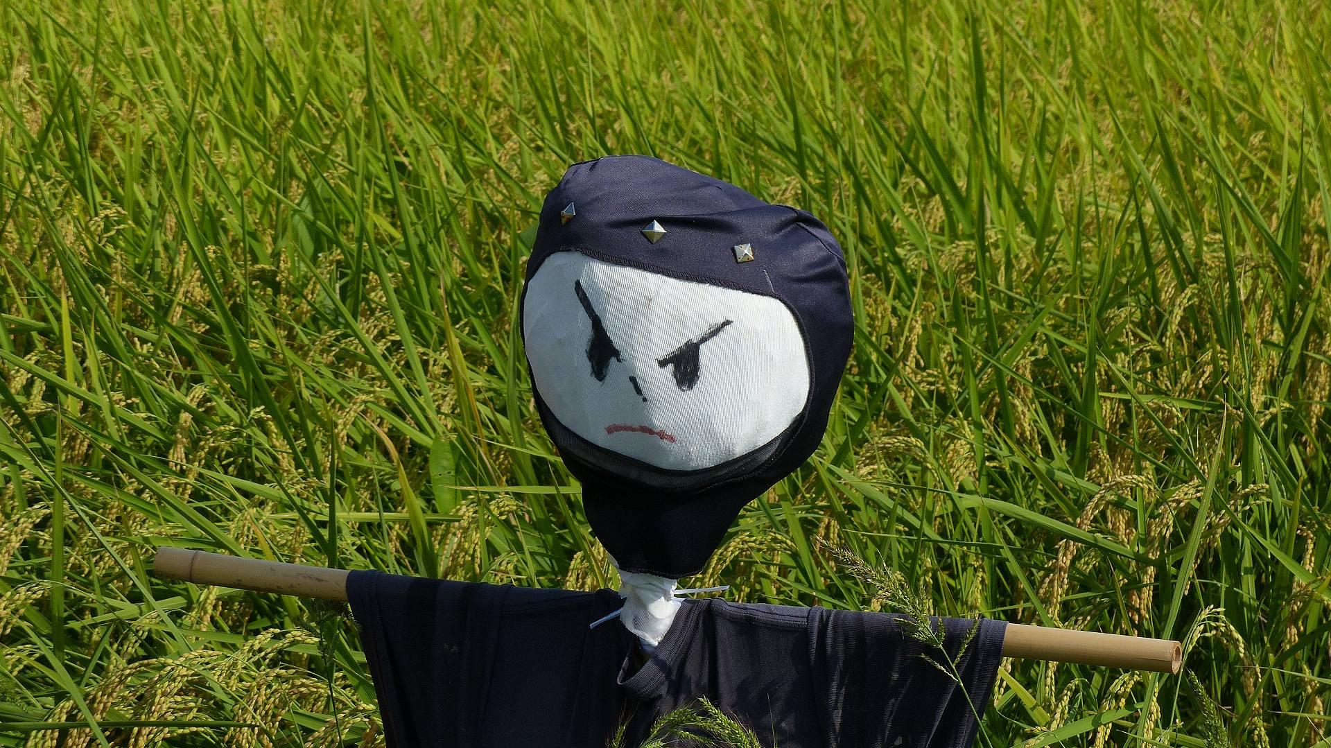 夏の尻尾と秋の実り 【 2016 9/10(土) 】_a0185081_19415856.jpg