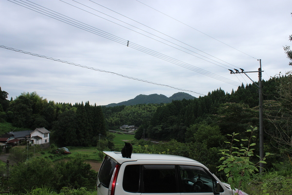 ご無沙汰キラ☆_a0174458_22123796.jpg