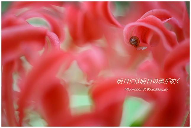 f0361079_1321988.jpg