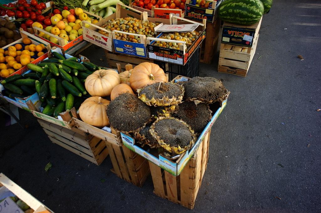 シチリア日記 Trapaniの魚市場_c0180686_16505413.jpg