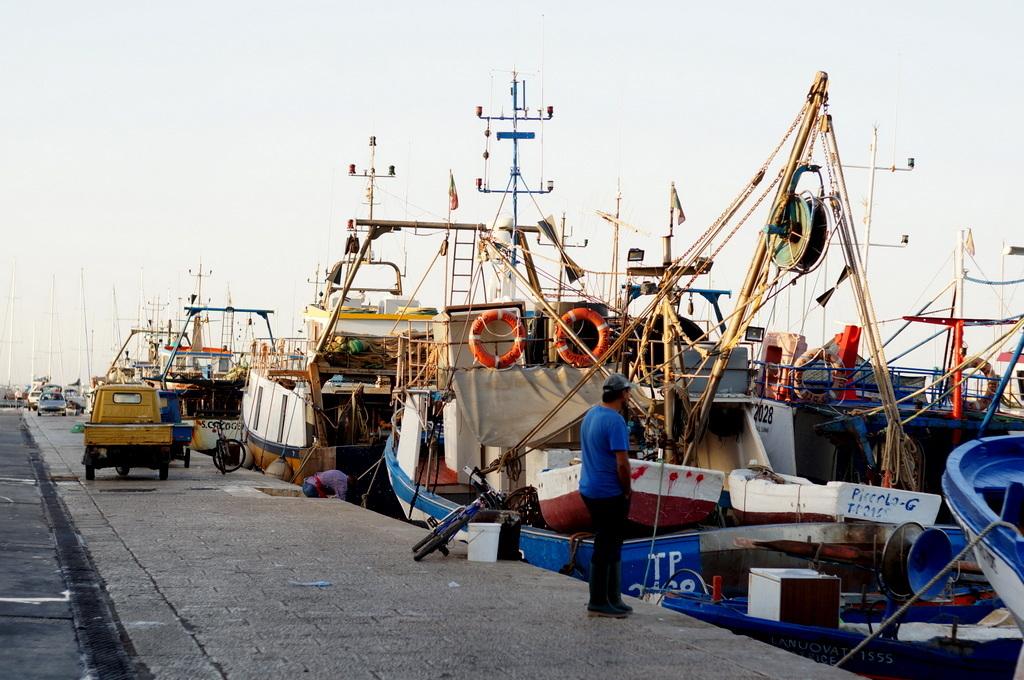 シチリア日記 Trapaniの魚市場_c0180686_17021940.jpg