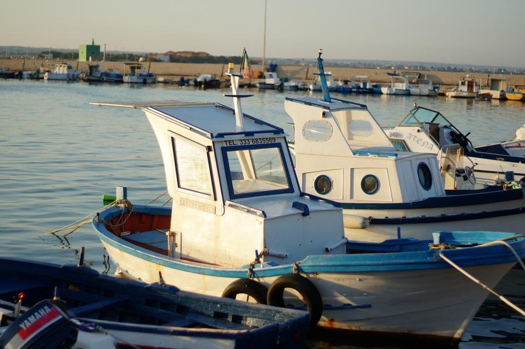 シチリア日記 Trapaniの魚市場_c0180686_17052623.jpg