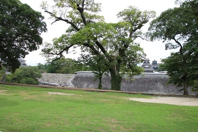 熊本大震災からの復興@崩壊した熊本城と加藤清正公の涙そして若者達への希望と勇気_d0181492_10534880.jpg