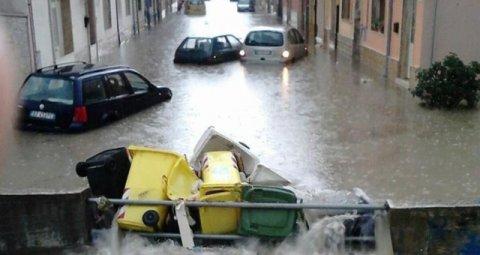 大雨の日々_b0305039_22549100.jpg