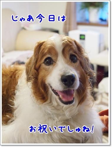 d0013149_10545948.jpg