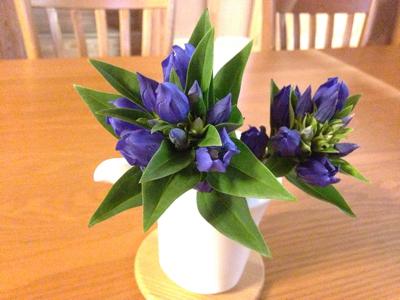 ブルーな空と花とギフト***_e0290872_18395504.jpg