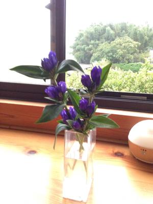 ブルーな空と花とギフト***_e0290872_18395811.jpg