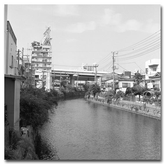 #2055 下町の川_e0175405_06590182.jpg