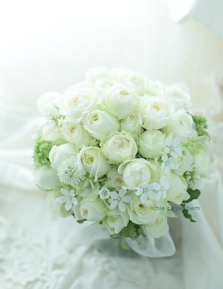 クラッチブーケ アルジェントASO様へ 9月のはじめ、ホワイトスターとバラで_a0042928_2154479.jpg