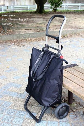 ROLSERのショッピングカートを使う_e0214646_10485958.jpg