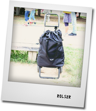 ROLSERのショッピングカートを使う_e0214646_1105651.png