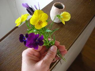 睡蓮のお花が咲きました♪_f0374160_17184222.jpg