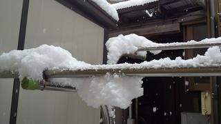 雪が積もりました~_f0374160_17213456.jpg