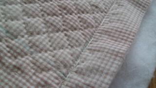 梅干し作りとミシン掛け~♪_f0374160_17231069.jpg