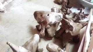 陶芸教室と展示会のお知らせ♪_f0374160_17284349.jpg