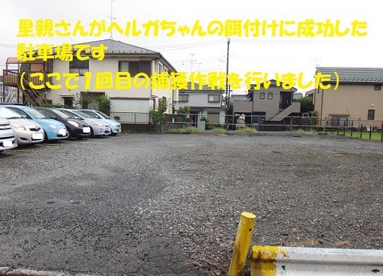 f0121712_14310468.jpg