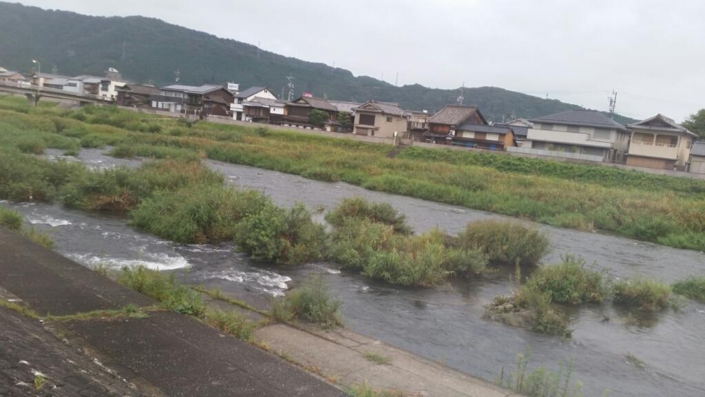 9月14日   河川情報。_c0266737_07055911.jpg