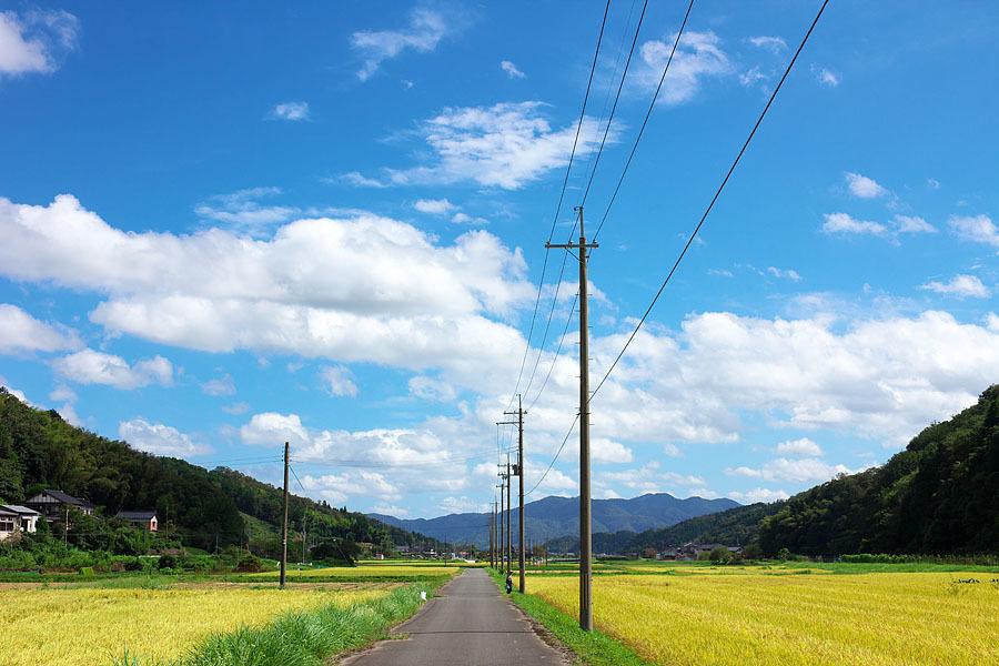 秋空恋し_c0067040_23211663.jpg