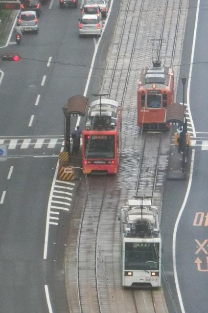 女性の美意識と生活習慣・・・若く、美しくあるために、松山市の路面電車_d0181492_18285011.jpg