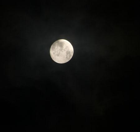 下鴨神社 名月管弦祭_e0048413_17284643.jpg