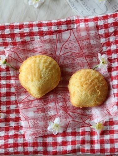 3時のお茶菓子マドレーヌ_c0366722_10200091.jpeg