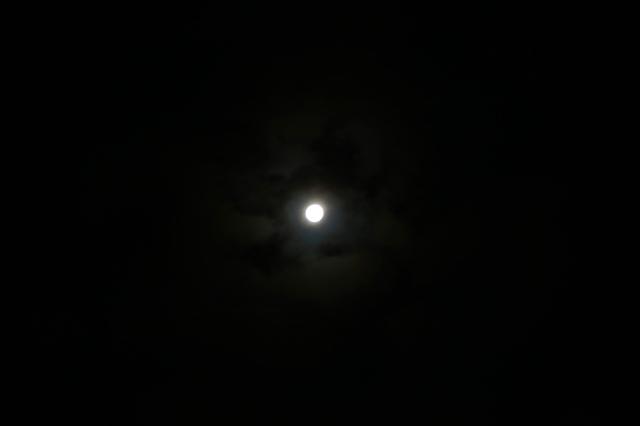 中秋の名月_f0348831_08061787.jpg