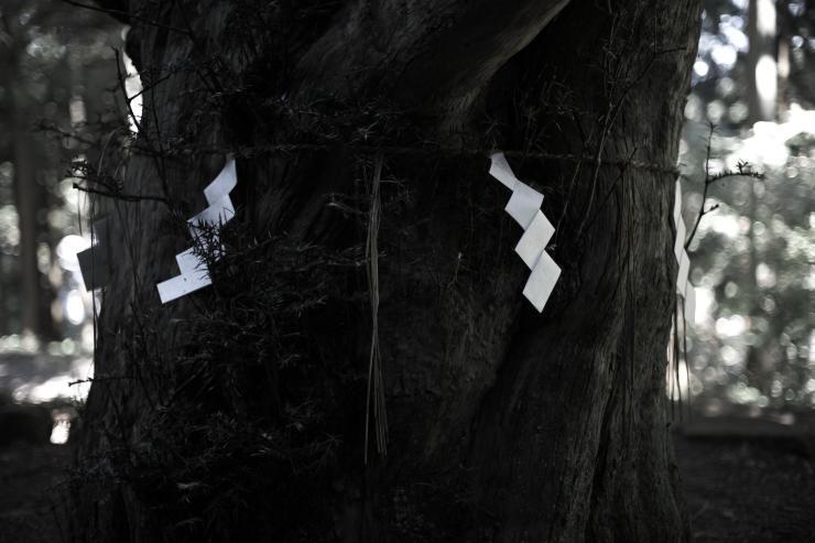 8月の秋田 9 真山神社(4cut)_e0342136_19095887.jpg