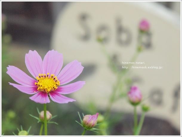 b0319255_18123651.jpg