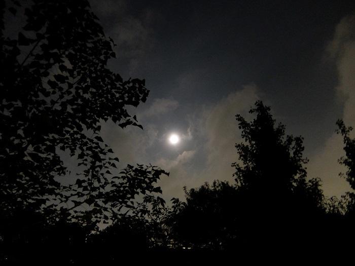 この月の月を・・・_c0119197_06410067.jpg