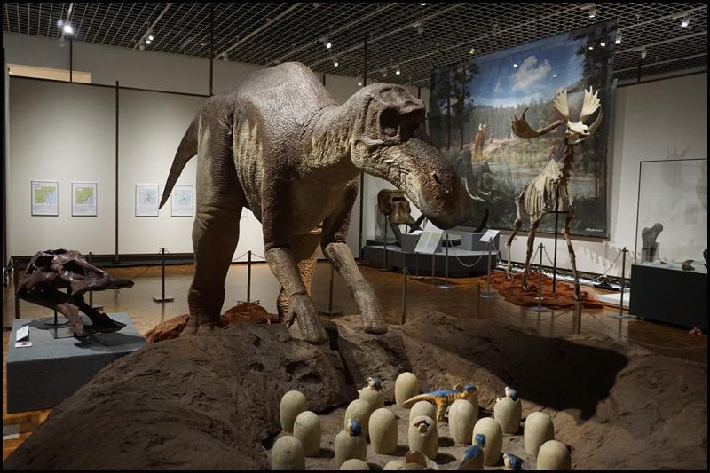 子育て恐竜マイアサウラ_b0019313_17241836.jpg