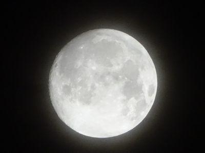 お月見と音楽とマフィンと・・_d0165645_10040118.jpg