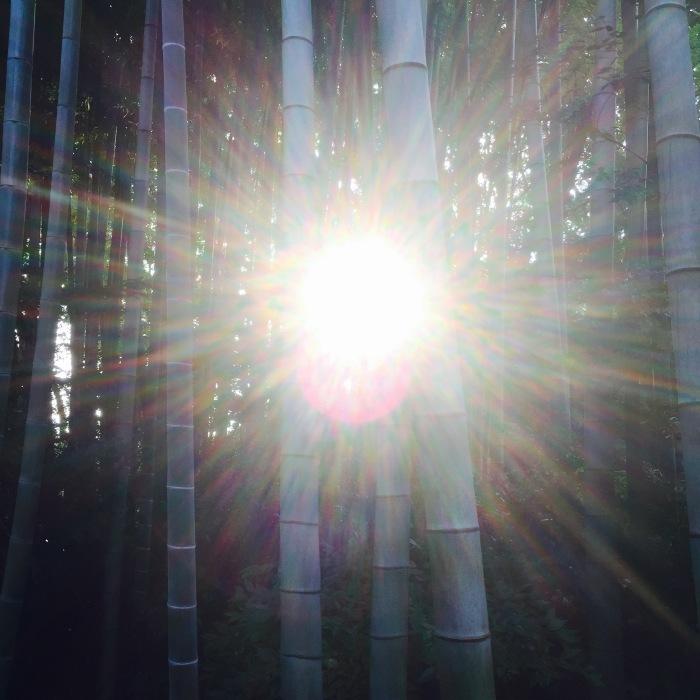 武相荘  陶芸教室  〔其の1〕太陽と満月  編_d0105967_19574035.jpeg