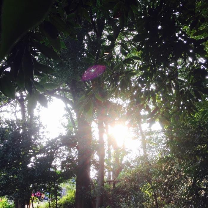 武相荘  陶芸教室  〔其の1〕太陽と満月  編_d0105967_20011651.jpeg