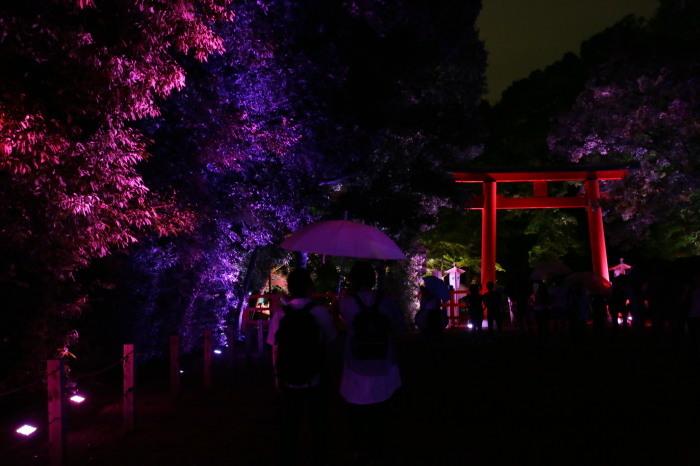下鴨神社 糺の森の光の祭_f0021869_23445279.jpg