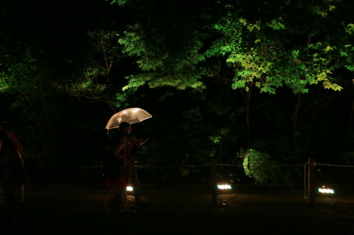 下鴨神社 糺の森の光の祭_f0021869_23460525.jpg