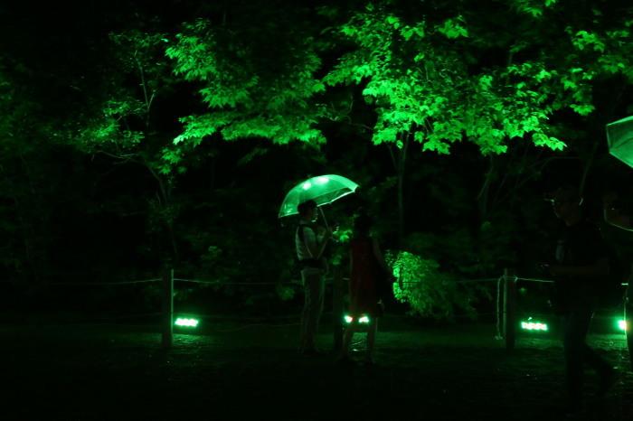 下鴨神社 糺の森の光の祭_f0021869_23470293.jpg