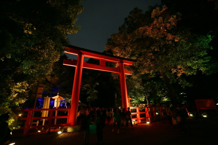 下鴨神社 糺の森の光の祭_f0021869_23482383.jpg