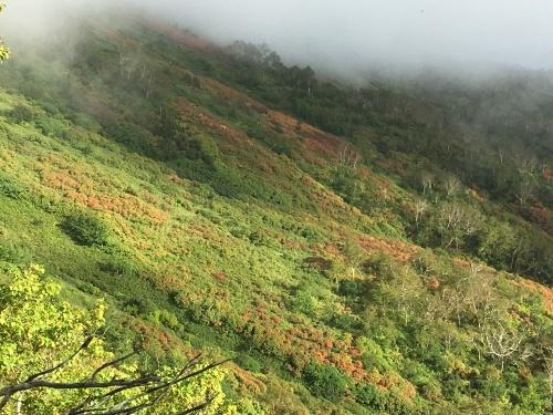 赤岳の一番紅葉~大雪山_e0326953_06381167.jpg