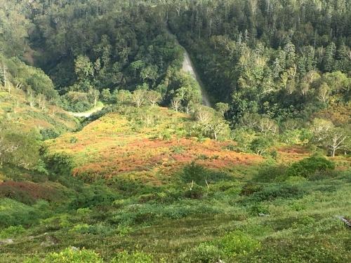 赤岳の一番紅葉~大雪山_e0326953_07032925.jpg